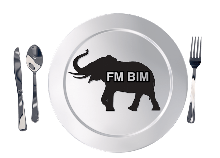 Eating the BIM FM elephant one bite at a time